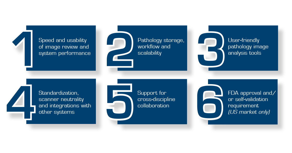 Six areas of guidance for a successful solution evaluation